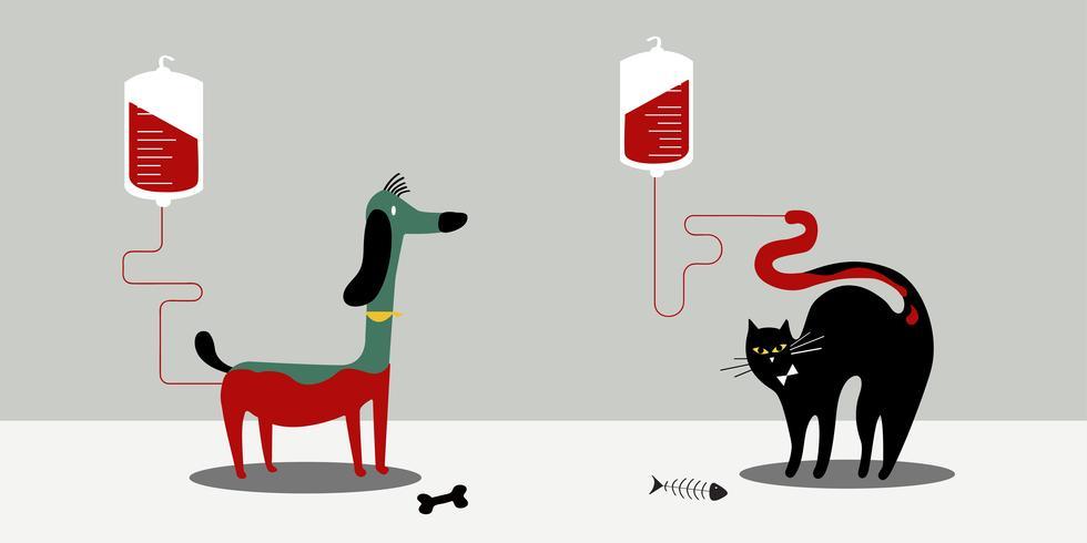 Ilustração em vetor de doação de sangue animal