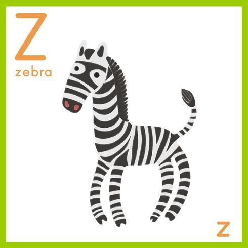 Alphabet Z et un zèbre