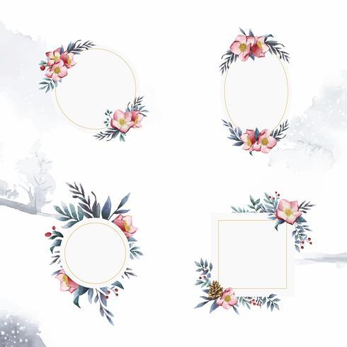Set av Hellebore blommarramar målade av akvarellvektorer