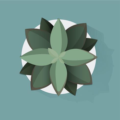 Illustratie van kamerplanten