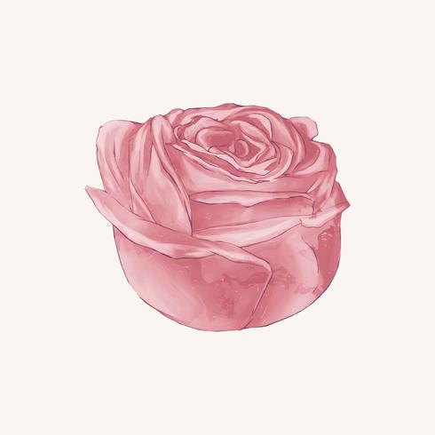 Ilustración de dibujo flor rosa