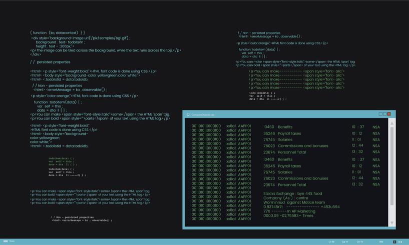 Abbildung des Computerhackingcodes