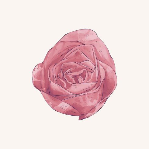 Illustration av teckning steg blomma