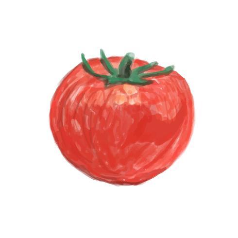 Style d'aquarelle de tomate dessiné à la main