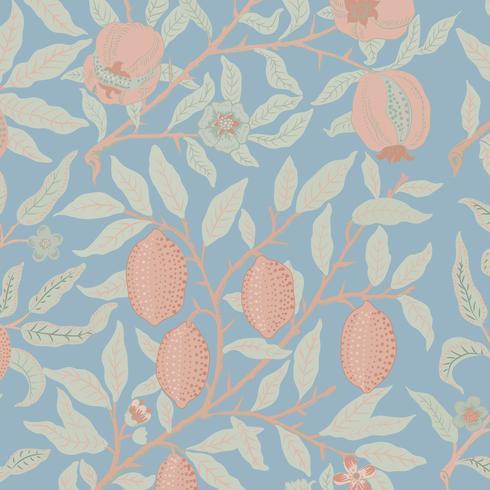 Tappningillustration av frukt eller granatäpple