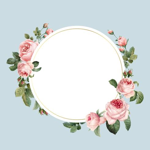 Blank rund rosa rosor ram vektor på blå bakgrund