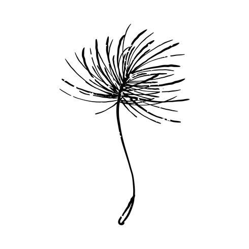 Ilustración de la planta