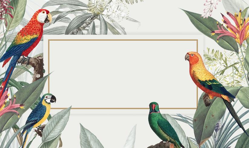 Macaw tropical mockup illustration