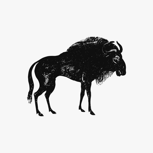 Wildebeest shade drawing