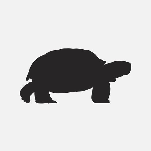 Style de dessin d'illustration de la tortue