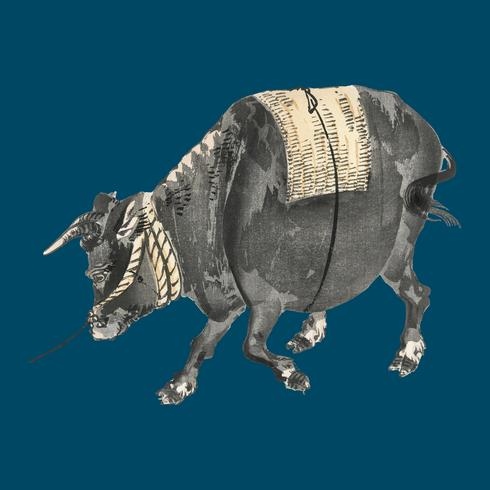 Black bull by K?no Bairei (1844-1895). Digitally enhanced from our own original 1913 edition of Bairei Gakan.