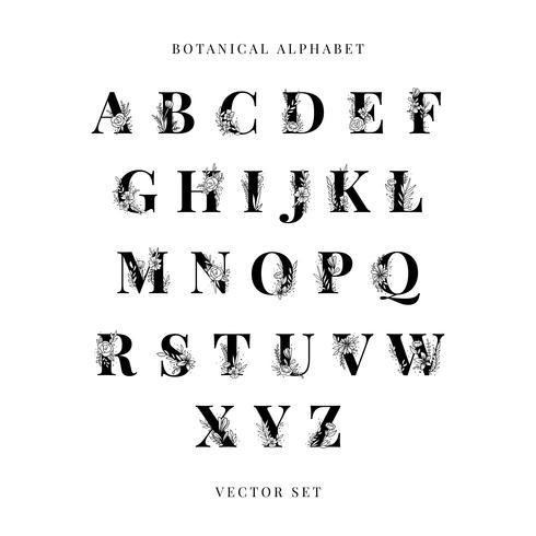 Alphabet botanique vector ensemble de lettres majuscules