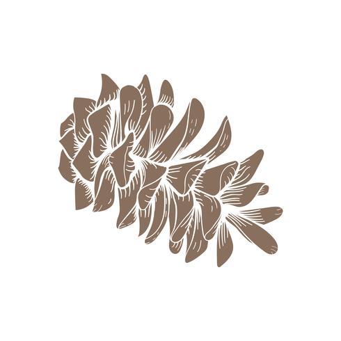 Vettore di coni dell'albero di abete