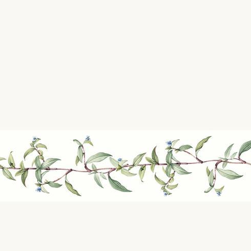 Vector de diseño de fondo botánico vacío