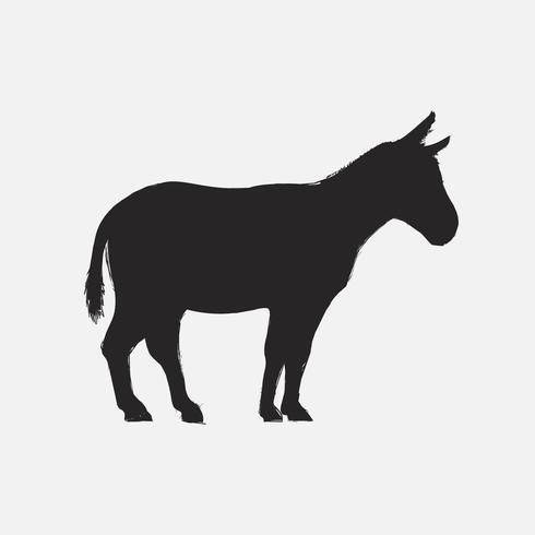 Illustration drawing style of donkey