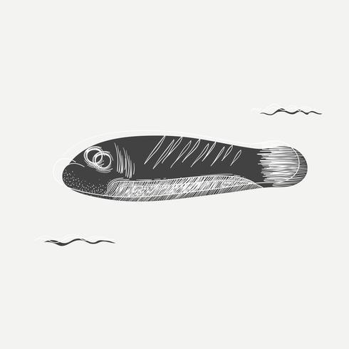 Caricatura desenho de um peixe
