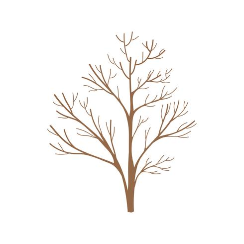 Tree branches without leaves vector