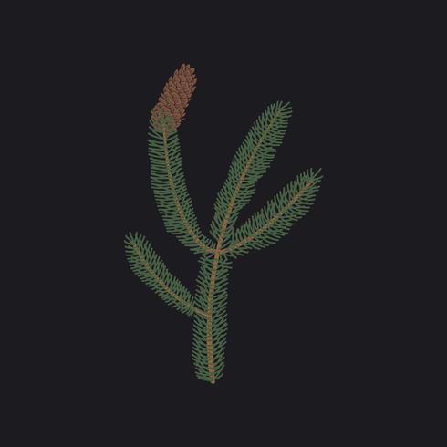 Branche de sapin avec un vecteur de pomme de pin