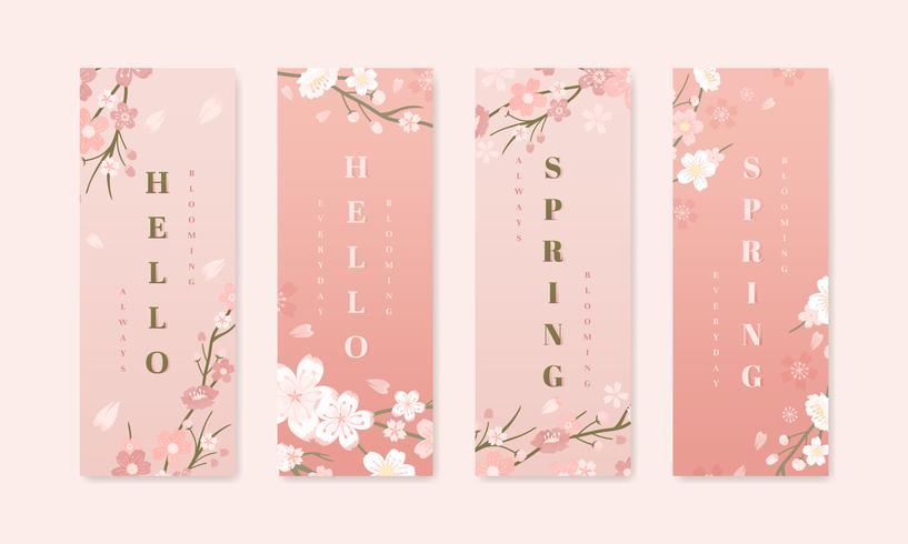 Coleções de fundo flor de cerejeira