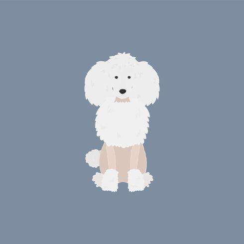 Cute illustration of a poodle dog