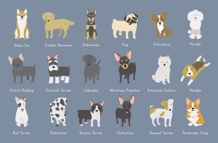 Illustration av hundsamling vektor