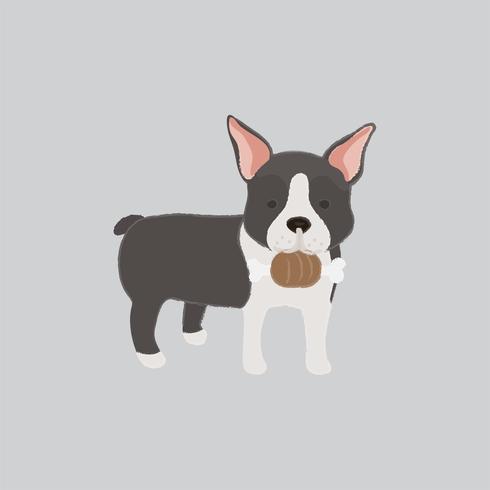 Linda ilustración de un perro boston terrier