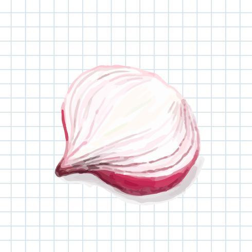 Handgezeichnete Zwiebel Aquarell Stil
