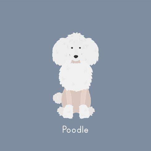Nette Abbildung eines Pudelhundes