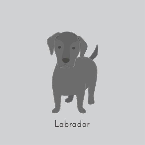 Cute illustration of a labrador dog