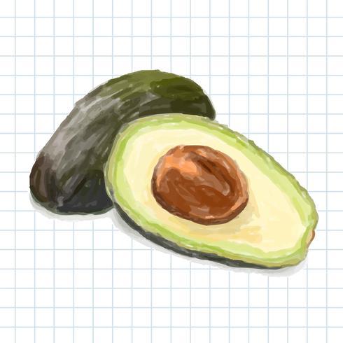 Handgezeichnete Avocado-Aquarell-Stil isoliert