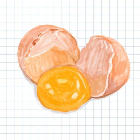 Handgjord färsk ägg akvarell stil