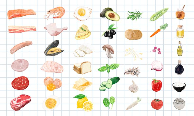 Estilo de aquarela mão desenhada alimentos ingredientes vetor