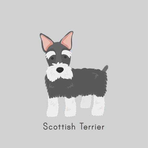 Bonito, ilustração, de, um, escocês, terrier, cão