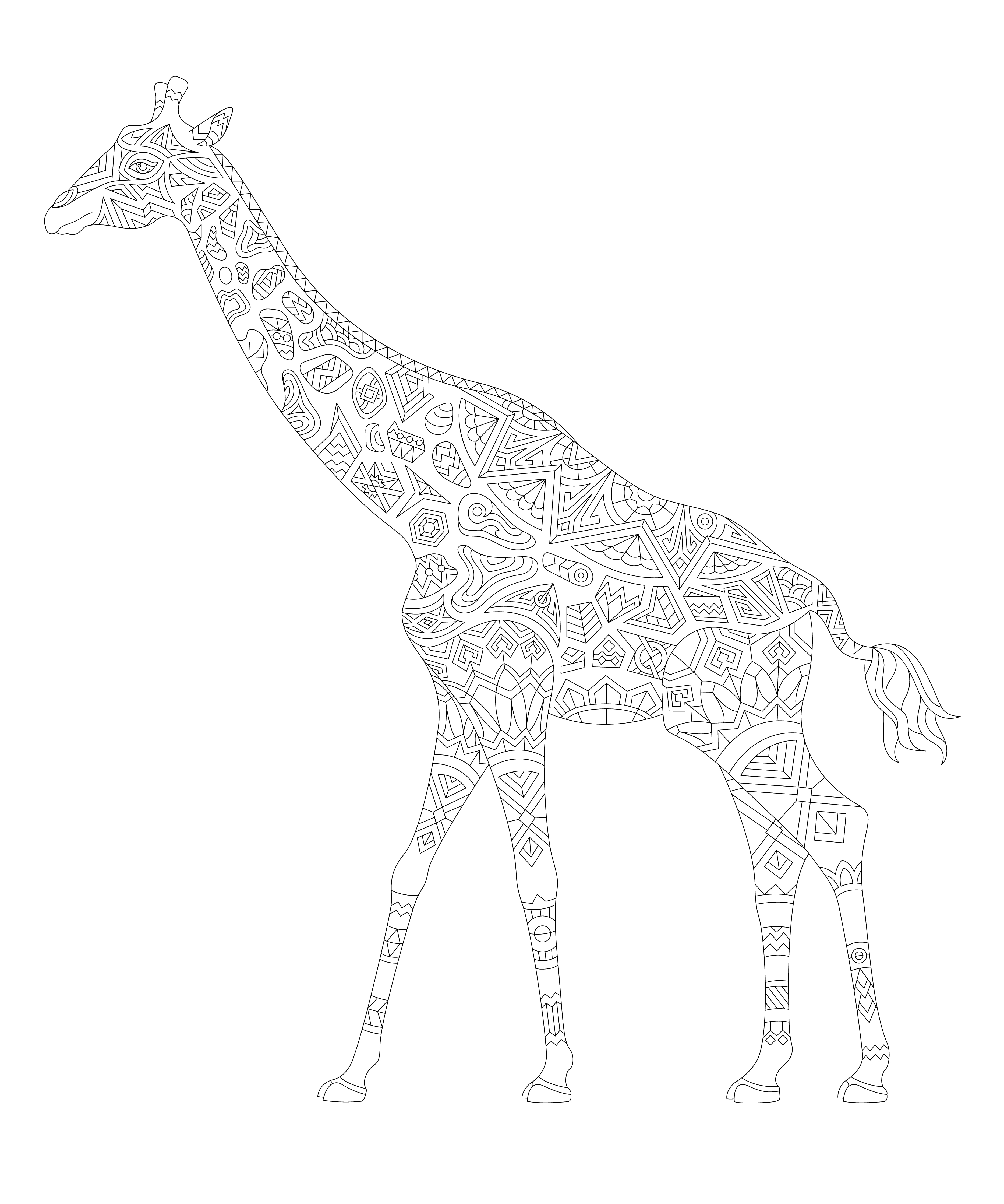 Illustration of animal adult coloring page - Download Free Vector ...
