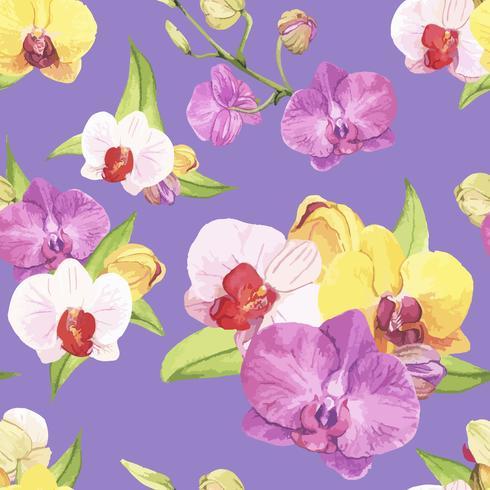 Hand getrokken orchideebloem geïsoleerd