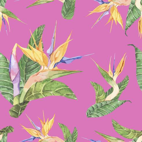 Hand getrokken geïsoleerde paradijsvogel bloem