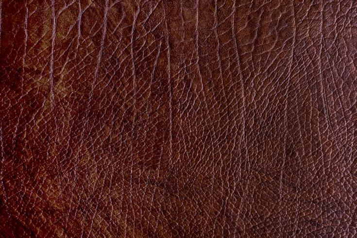 Brown rough leather textured background vector