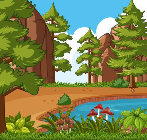 Bakgrundsscen med liten pool i skogen