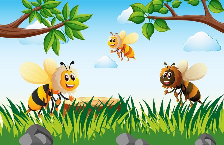 Bienen, die tagsüber in Garten fliegen