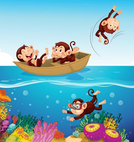 Mono feliz en el mar