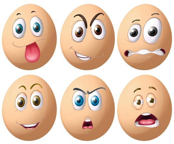Huevos vector