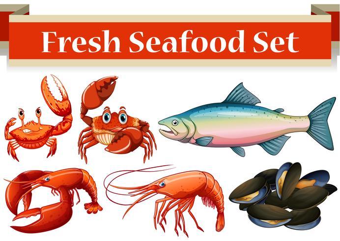 Diferentes tipos de pescados y mariscos frescos. vector