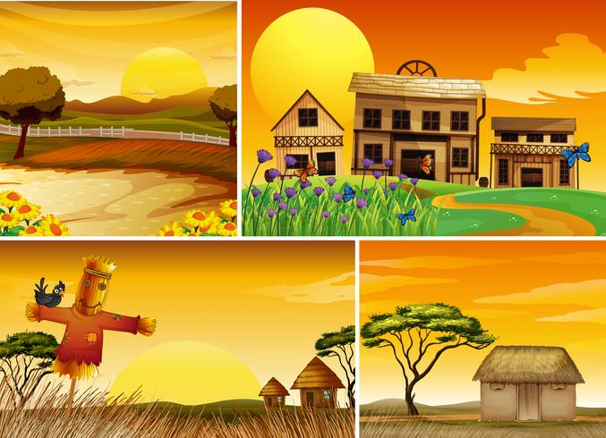 Background scenes at sunset