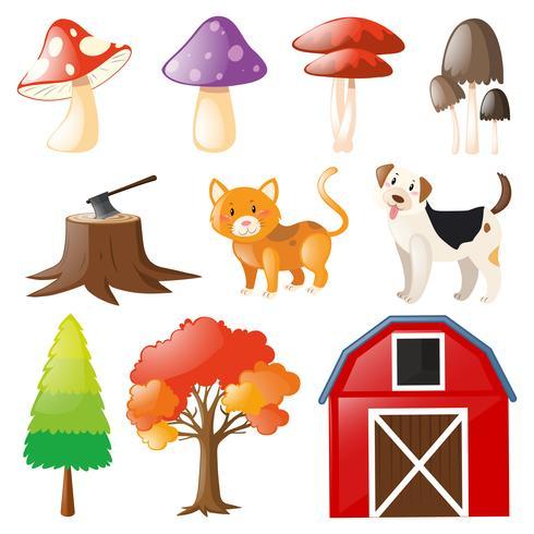 Animales domésticos y elementos de la granja.