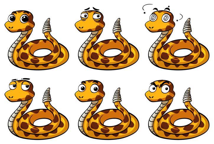 Rattle orm med olika ansiktsuttryck vektor