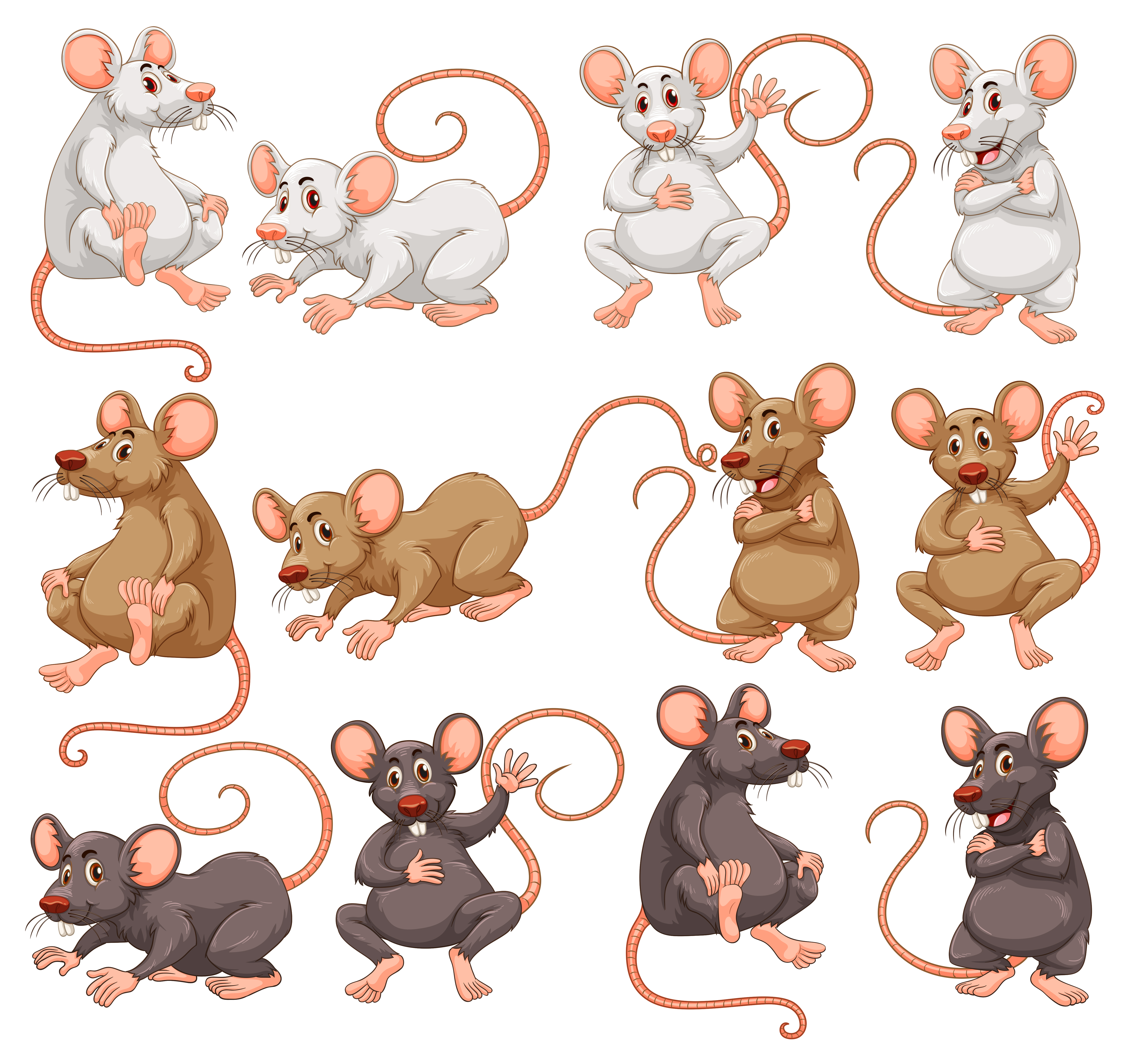 Mouse with different fur color - Download Free Vectors ...