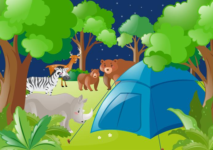 Escena con carpa y animales salvajes en bosque.