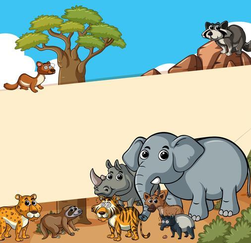 Plantilla de papel con animales salvajes en el campo. vector