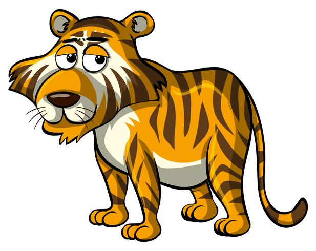 Wild tiger with sleepy eyes