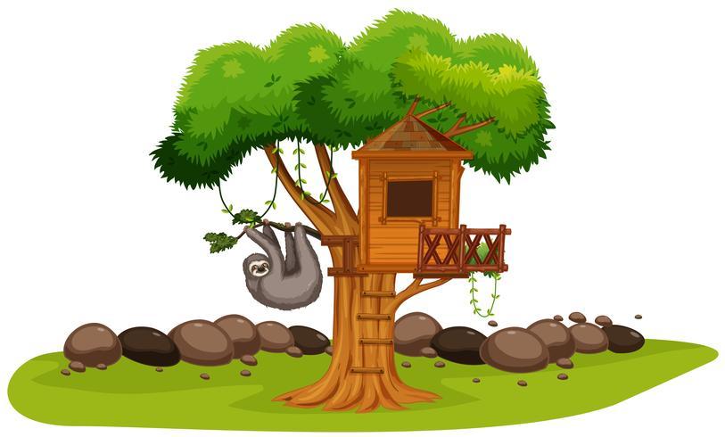En sloth på trädhuset